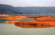 Η Ελλάδα για το βραβείο του Συμβουλίου της Ευρώπης με το έργο της Λίμνης Κάρλας