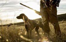 Απαγόρευση κυνηγιού από το Δασαρχείο Τρικάλων