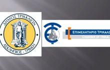«Ενεργειακή» συνεργασία Δήμου Τρικκαίων - Επιμελητηρίου