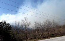 Πυρκαγιά ξέσπασε στις ΛΟΓΓΙΕΣ (Συν/σμό Αγίου Κων/νου) του Δήμου Πύλης