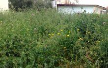 Δ. Μουζακίου: Υποχρέωση αποψίλωσης χόρτων και καθαρισμού οικοπέδων απόιδιοκτήτες