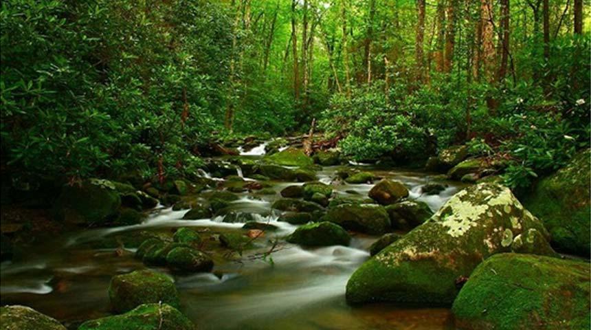 Η φύση μας φωνάζει...