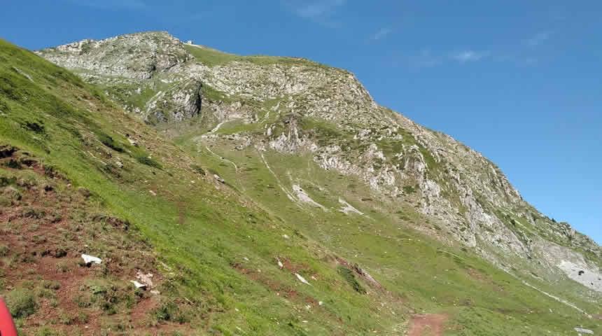 Εκατοντάδες πρόβατα έπεσαν σε γκρεμό στην περιοχή του Ανθοχωρίου