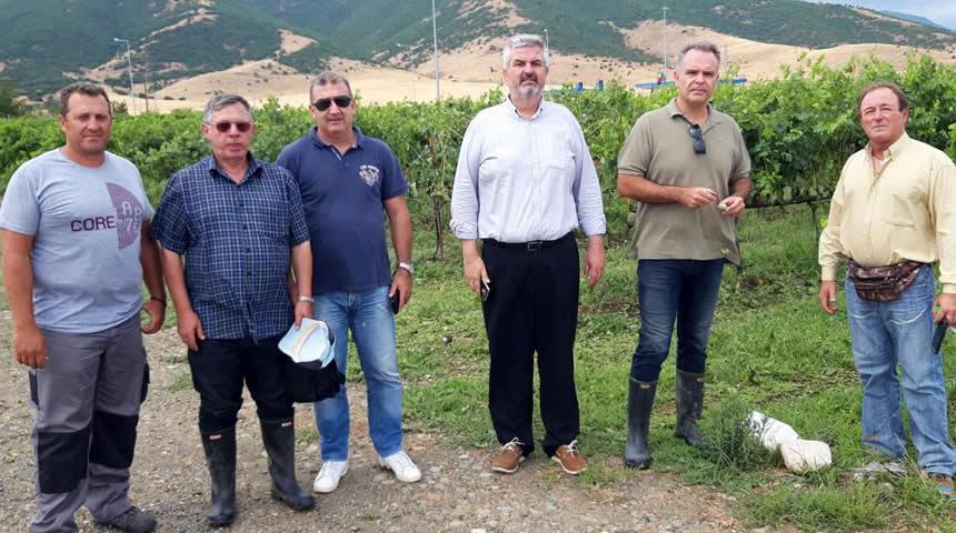 Κλιμάκιο του ΕΛΓΑ για πρώτη αυτοψία ζημιών στο Δήμο Σοφάδων