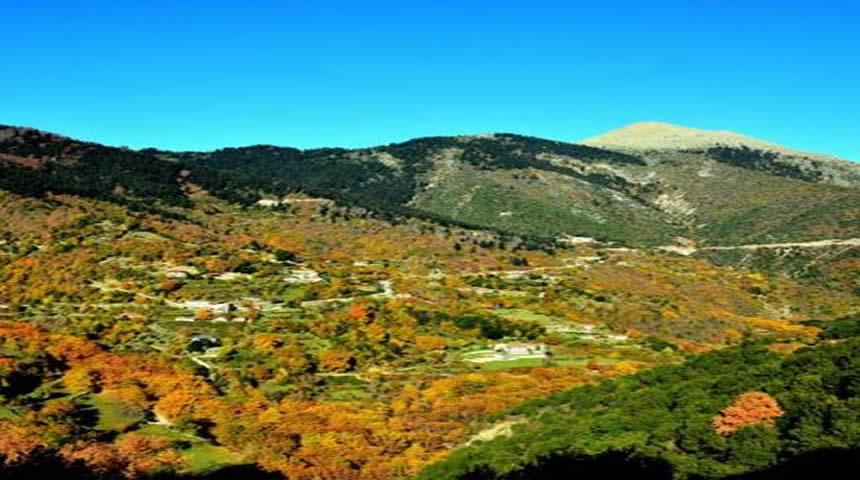 Νέα μόδα: Μυστήρια Γάμου & Βαπτίσεων στα Ορεινά! Στη σκιά του Πλατάνου!
