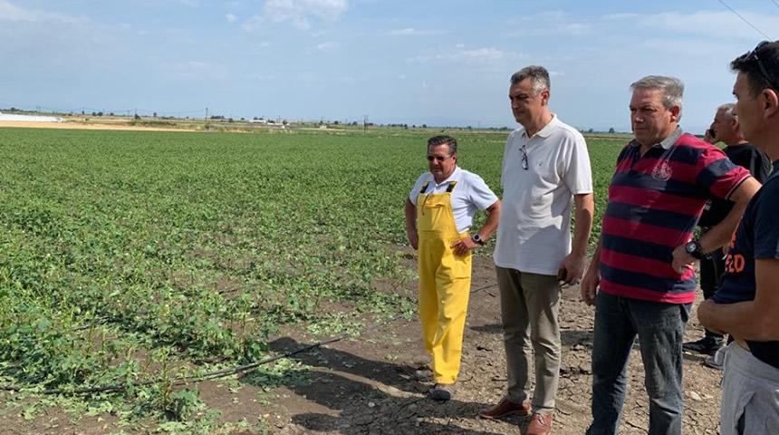 Επισκέψεις του βουλευτή Γ. Κωτσού στις πληγείσες καλλιέργειες