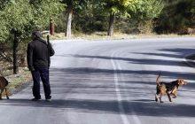 Άδεια χρήσης διαδικτυακής εφαρμογής προς κυνηγούς από την Ζ΄ Κυνηγετική Ομοσπονδία Θεσσαλίας