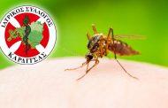 Εμφάνιση νέων κρουσμάτων του ιού του Δυτικού Νείλου