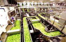Ενισχύσεις για γεωργικές επιχειρήσεις στη Θεσσαλία