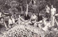15η Οκτωβρίου παγκόσμια ημέρα της αγρότισσας...Oι γυναίκες που φυτεύουν τα όνειρα τους