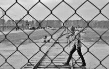 Η Δημοτική Πινακοθήκη Καρδίτσας υποδέχεται την έκθεση φωτογραφίας των Αδριανού Λέκκα και Ρούλας Σιλιντζή