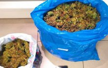 Λάρισα: Συνελήφθη 36χρονος με πάνω από 2,5 κιλά κάνναβης