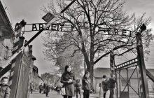 Δημοτική Πινακοθήκη Καρδίτσας: Αυλαία για την έκθεση φωτογραφίας:  Άουσβιτς - ενάντια στη λήθη των Αδριανού Λέκκα και Ρούλας Σιλιντζή
