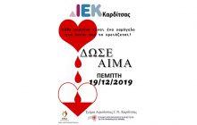 10η Εθελοντική Αιμοδοσία στο Δημόσιο Ι.Ε.Κ Καρδίτσας