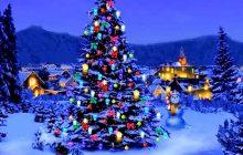 Ανάβουμε το Χριστουγεννιάτικο Δέντρο στο Αγναντερό!