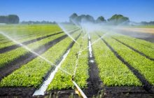 Κατόπιν συνεννόησης η χρήση των παρόχθιων για τους αγρότες του Δήμου Κάμπου