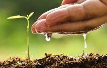 Νέα Φυτοϋγειονομική Νομοθεσία - Ενημέρωση για τη διαδικασία εγγραφής στο Νέο Επίσημο Μητρώο