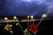 Καιρός Τσικνοπέμπτη: Με βροχές και καταιγίδες το τσίκνισμα