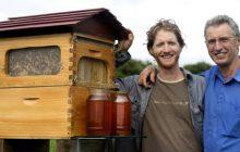 Κυψέλη συλλέγει το μέλι χωρίς να ενοχλούνται οι μέλισσες!