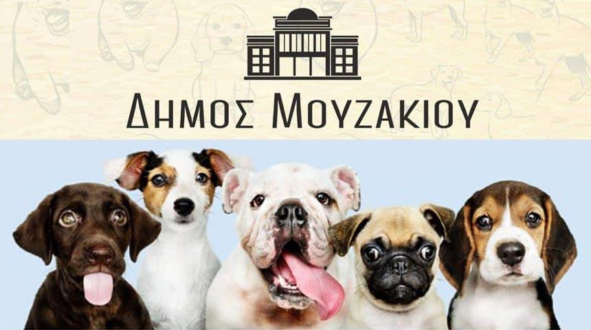 Οργανωμένη δράση ενημέρωσης από το Δήμο Μουζακίου για την προστασία και την ευζωΐα των ζώων