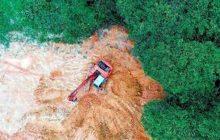 Κορωνοϊός: Σκληρή προειδοποίηση της Φύσης;