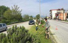 Επισημάνσεις της Δ/νσης καθαριότητας του Δήμου Καρδίτσας