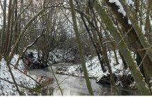 Δηλώσεις ζημιάς ΕΛΓΑ στην επικράτεια του Δήμου Σοφάδων