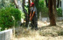 Δήμος Πύλης: Καθαρισμός οικοπέδων εν όψει αντιπυρικής περιόδου