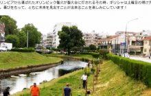 Οι κερασιές «ανθίζουν» τη σχέση Τρικάλων – Ιαπωνίας