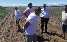 Σε χαλαζόπληκτες καλλιέργειες στο Δήμο Παλαμά περιόδευσε ο Βουλευτής Γ. Κωτσός