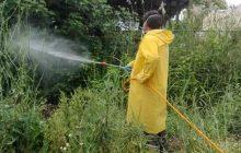 Δήμος Καρδίτσας: Ολοκληρώθηκε ο πρώτος κύκλος ψεκασμών καταπολέμησης των κουνουπιών