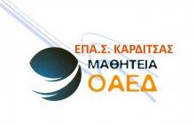 Νέες ειδικότητες με ζήτηση στην αγορά εργασίας στην ΕΠΑ.Σ. Ο.Α.Ε.Δ. Καρδίτσας
