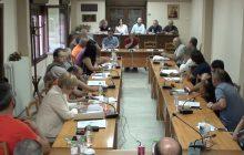 Δημοτικό Συμβούλιο Δήμου Μουζακίου 24 Ιουλίου 2020 (video)