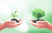 27 νέα Σχέδια Βελτίωσης εντάσσονται στο Πρόγραμμα Αγροτικής Ανάπτυξης 2014-2020