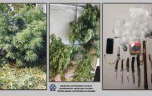 Λάρισα: Σύλληψη ατόμου για παράβαση των νόμων περί ναρκωτικών και περί όπλων