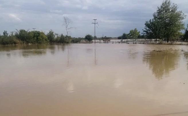 Ανακοινώθηκε από τον ΕΛΓΑ ο πίνακας με τα πορίσματα εκτίμησης των ζημιών από τις πλημμύρες σε Κρανέα και Μαγούλα
