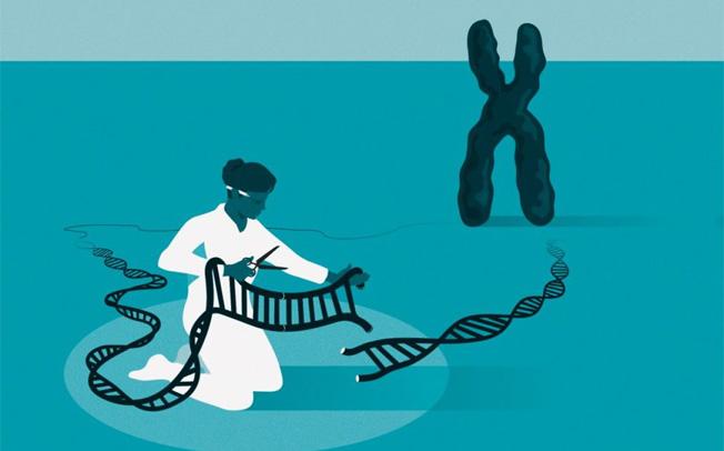 Τεχνολογία μηχανικής γενετικής CRISPR
