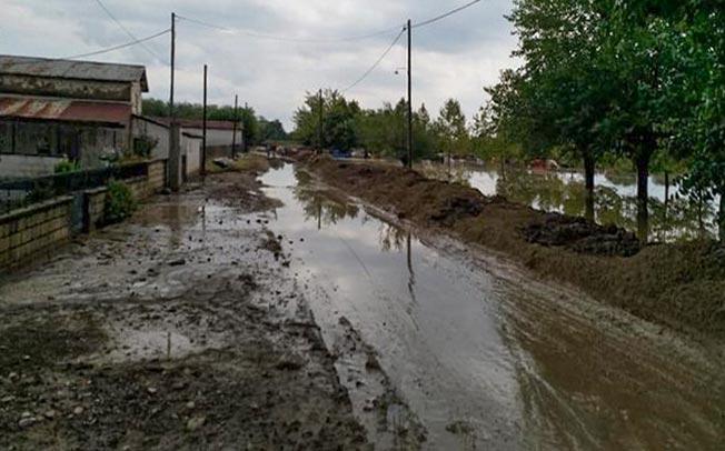 Ο Δήμος Τρικκαίων δίπλα στους πληγέντες αγρότες στα Μ. Καλύβια