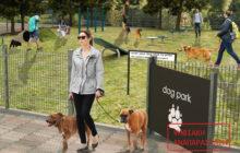 Πάρκο σκύλων δημιουργεί ο Δήμος Τρικκαίων