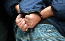 Εξιχνιάστηκαν 16 περιπτώσεις κλοπών που διαπράχθηκαν σε περιοχές του Δήμου Σοφάδων Καρδίτσας