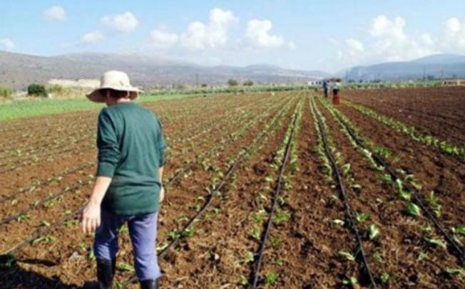 ΕΦΚΑ: Σε πέντε δόσεις οι εισφορές για αγρότες και επαγγελματίες