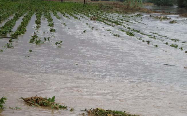 Δήμος Καρδίτσας: Ανακοίνωση σχετικά με τον πίνακα πορισμάτων εκτίμησης των ζημιών στην Τ.Κ. Προδρόμου