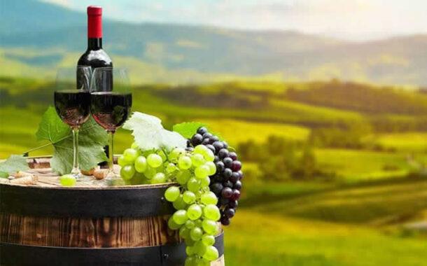 Παράταση έως τις 31/3 οι αιτήσεις επιστροφής ή διαγραφής ΕΦΚ στο κρασί