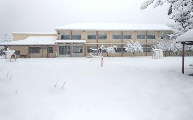 Δήμος Μουζακίου: Κλειστά και αύριο τα σχολεία λόγω παγετού